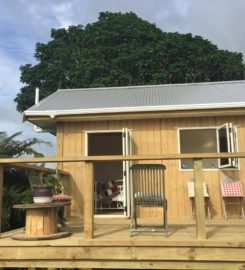 Tiny house in New Plymouth